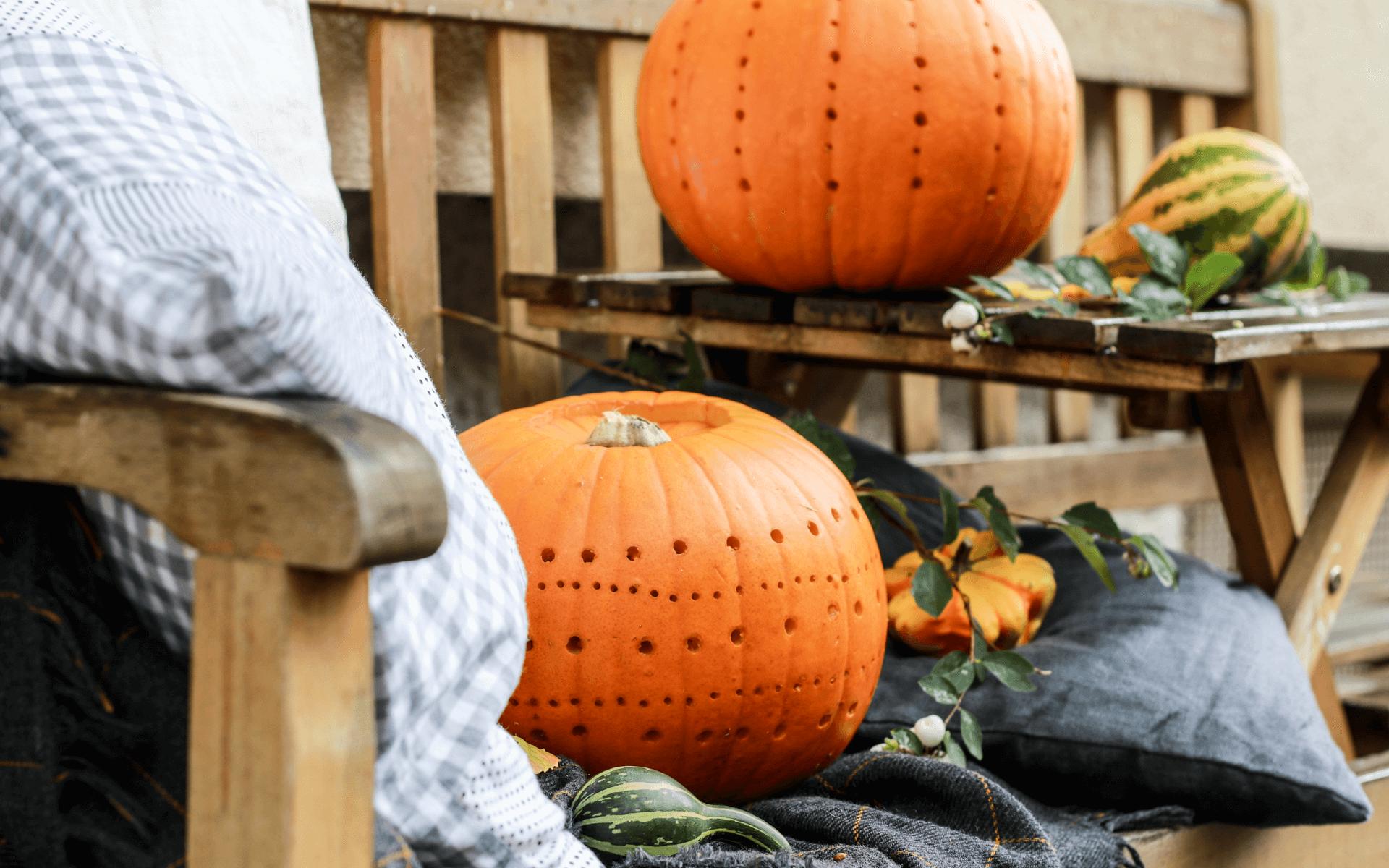Kürbislaternen: schön statt schaurig im Herbst